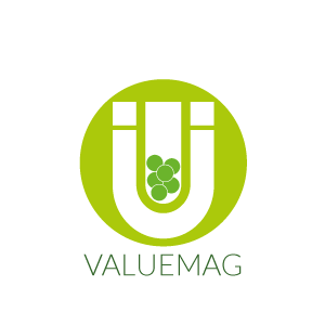 VALUEMAG-LOGO-IMAGE