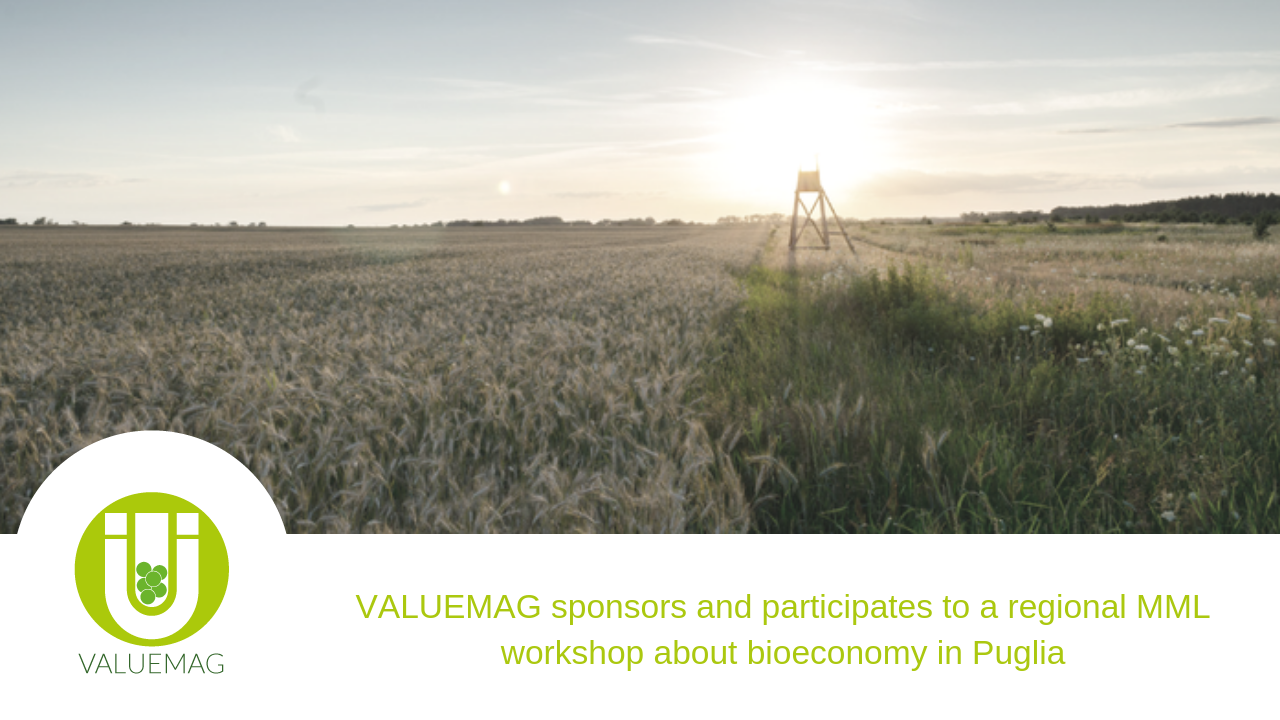 Valuemag sponsors and participates to a workshop about bioeconomy in Puglia