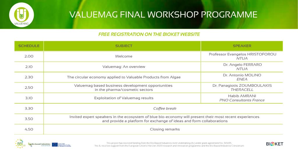 VALUEMAG-Final workshop programme